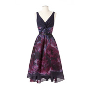 Picture of Lela Rose Dress